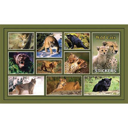 Наклейка дикие кошки 187-07