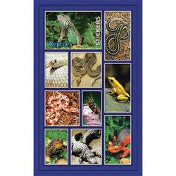 Наклейка рептилии 186-03